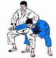 Judo worp