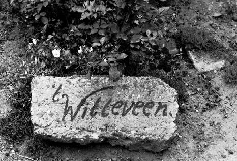 't Witteveen steen