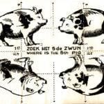 Zoek het 5e Zwijn1